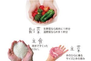 副菜は生野菜なら両手に1杯分、温野菜なら片手1杯分。主食は両手ですくったくらい。主菜は手のひらに乗るサイズと手の厚み。